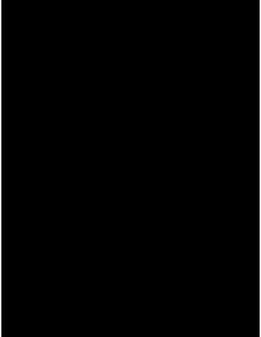 TRIBAL SLALOM MK1
